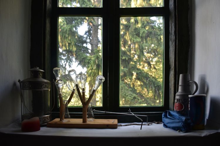 Bottle Day Glass Glass - Material Growth Home Interior Indoors  Lamp Nature No People Old Plant Still Life Transparent Tree Vintage Window Window Sill