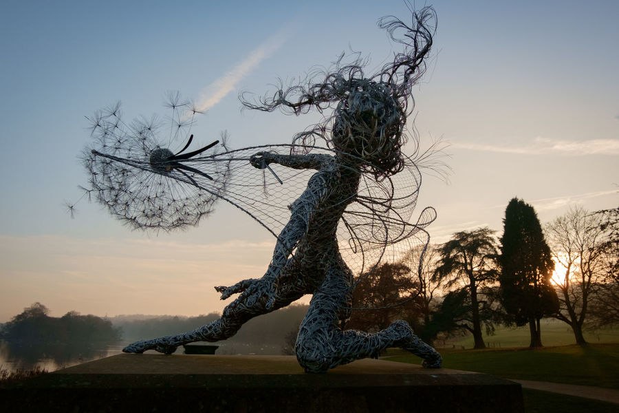 The Trentham Faries at Trentham Gardens on a cold November day as the sun set. Dandelion Fairy Faries Garden Lake Landscape Nature Outdoors Robin Wight Sculpture Sky Staffordshire Sunset Trenthamfairies Trenthamgardens Winter Wire