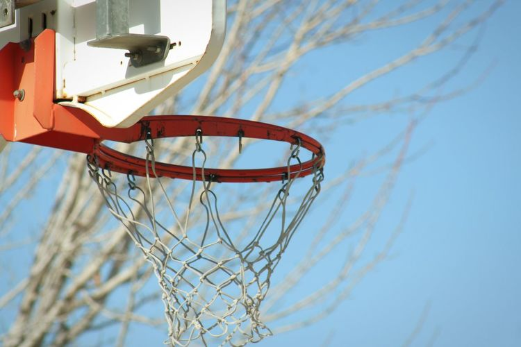 Low angle view of basketball hoop against bare tree