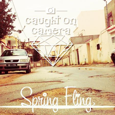 Spring Photography Photo Editor Photo Around Me Taking Photos How's The Weather Today?