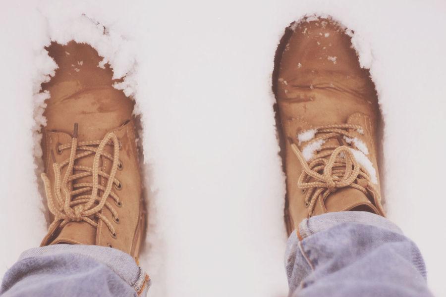 Gelios44 Nature Snow Walking Around Winter