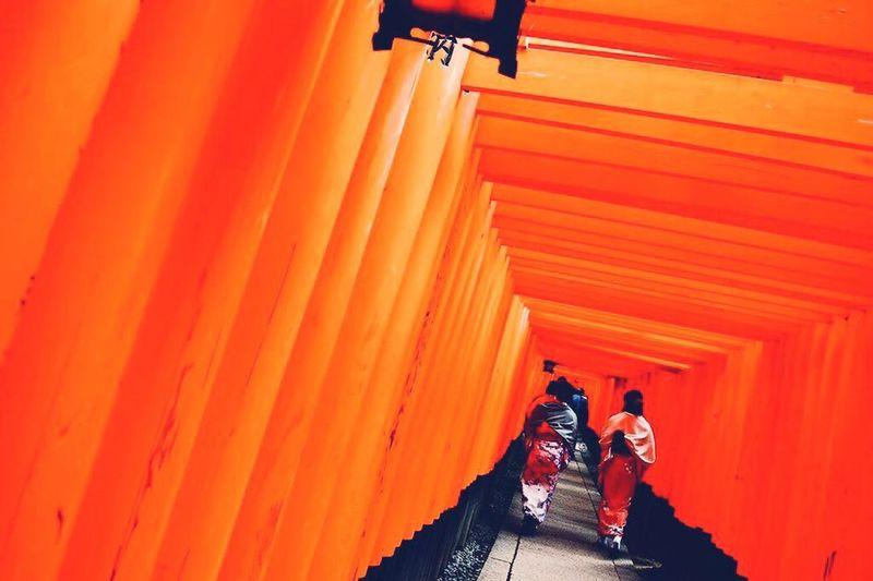 Japan Kyoto At Kyoto Hushimiinari 伏見稲荷大社 Senbondorii 千本鳥居