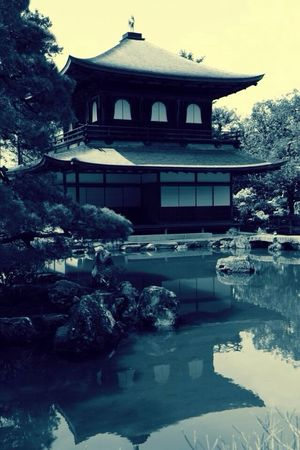Time To Reflect Japan Kioto Water Reflections