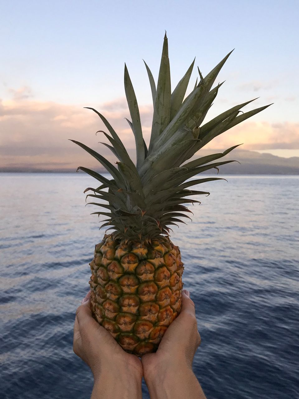 Cropped Hand Of Woman Holding Pineapple Against Sea During Sunset