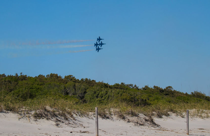 Navy Blue Angels Aerospace Industry Air Vehicle Airplane Blue Clear Sky Day Environment Flying Land Low Angle View Mid-air Mode Of Transportation Motion Nature No People on the move Outdoors Plane Plant Sky Trail Transportation Travel Tree Vapor Trail