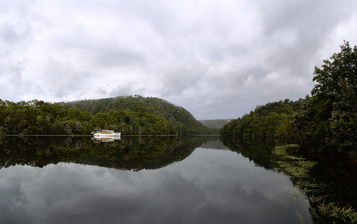 The reflections on the Pieman River in the Tarkine (Northwest Tasmania) are truly something else. Maybe its the tannin stained water and the tree lined banks in any case it always stops me in my tracks. Beauty In Nature Boat Day Eyeem Australia Idyllic Illusion Landscape Nature No People Olympus OM-D E-M5 Mk.II Overcast Pieman River Reflection Reflection Lake River Scenics Sky Standing Water Symmetry Tarkine Tasmania Tranquil Scene Tranquility Tree Water