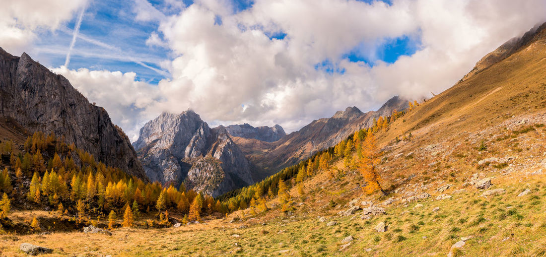 The mountain autumn landscape with colorful forest Mountain Cloud - Sky Sky Scenics - Nature Landscape Environment Nature Mountain Range Land No People Tranquil Scene Remote Valley Non-urban Scene Rock Outdoors Forest Day Tree Formation Mountain Peak Coniferous Tree Pine Woodland Autumn Fall
