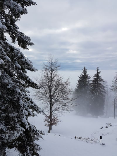 Winter Country Dream MR7 Samsung Travel Winter Wood Cold Italy Landscape Lombardia Mountains Poetry Snow White