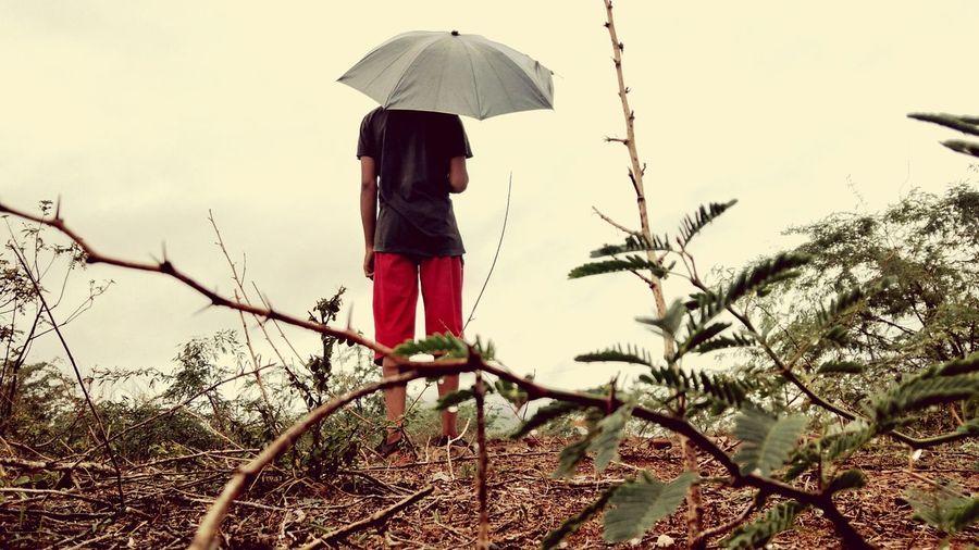 mmmhhh... Tree Full Length Women Standing Protection Rear View Sky Umbrella Monsoon Rainy Season Wet Dew