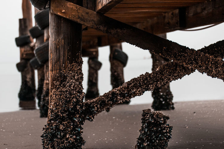 Close-up of rusty pier over sea against sky