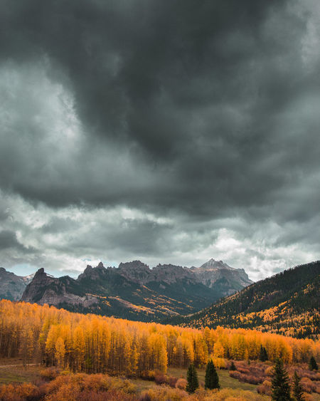 The most vibrant fall colors i have ever experienced. Combine that with dramatic clouds and the Rockies and you find yourself in a dream. Colorado Dramatic Sky EyeEm Best Shots Beauty In Nature Cloud - Sky Clouds Environment Fall Land Landscape Moody Mountain Mountain Range Mountains Nature No People Outdoors Plant Scenics - Nature Sky Vibrant Color Yellow