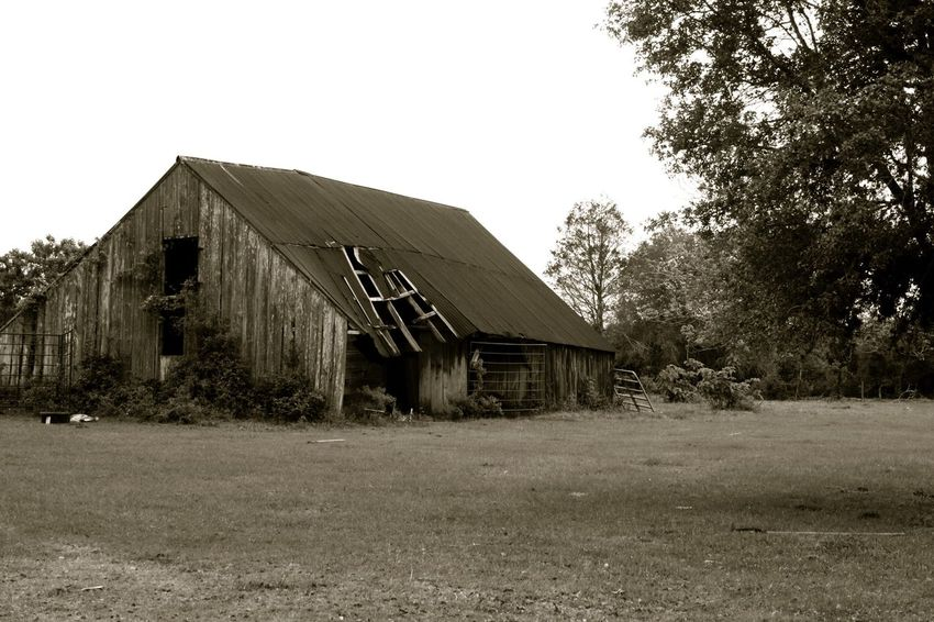 TexasBarn Farm Scenics Bench Black And White No People Outdoors Ranch Barn Rustic country life Nature old Texas Hill Country pasture oaks