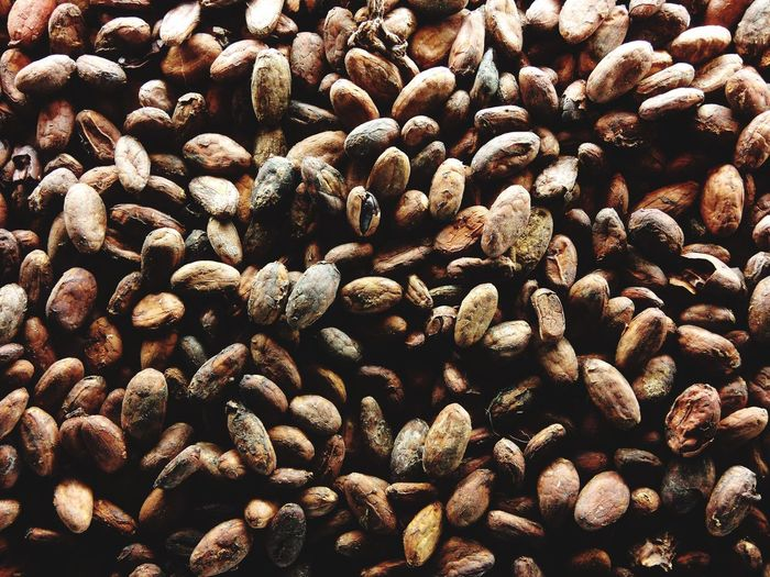 Full frame shot of cocoa beans
