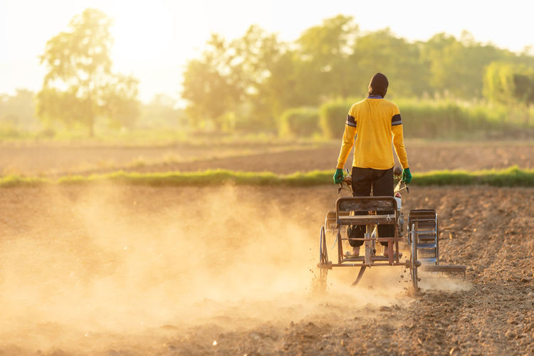 Rear view of man on agricultural field