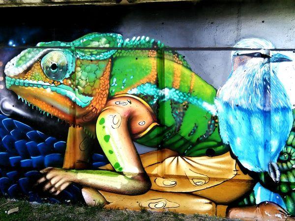 Street Art Graffiti Art Graffiti Art