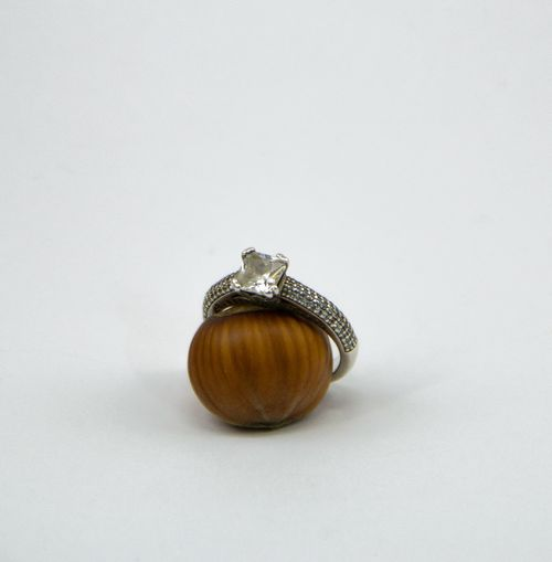 Close-up of snail over white background
