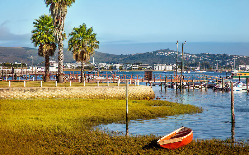 South Africa Africa Beach Beauty In Nature Day Grass Knysna Lake Moored Nature Nautical Vessel No People Outdoors Palm Tree Scenics Sea Sky Tranquil Scene Tranquility Tree Water