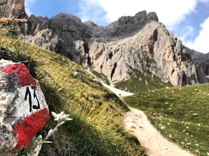 Cairo Club Alpino Italiano Dolomites, Italy Südtirol Trail Running Day Edelweis Edelweiss Hiking Trail Italy Italy Hiking Marked Trail Mountain Mountain Range No People Number 13 Rock - Object Scenics Trail 13 Trail Marker