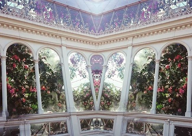At this time the true narrative of life is yet to be commenced. Seftonpark CrystalPalace PalmHouse White Pink Green Flowers Crystal Roses Greenhouse Architecture Pillars Columns Arches Plants Nature Invernadero Fleures England