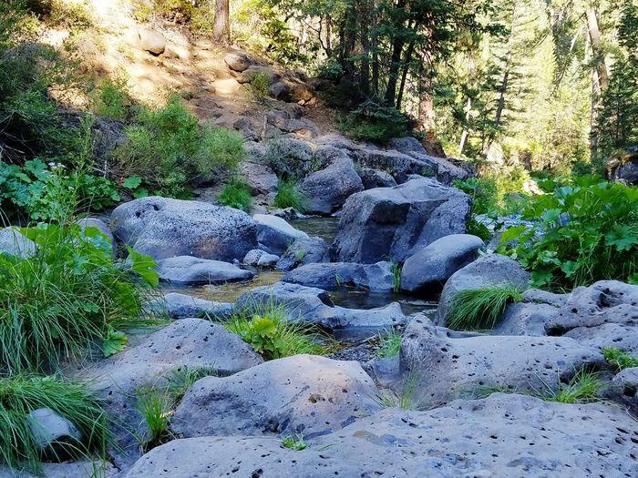 Giant rocks a