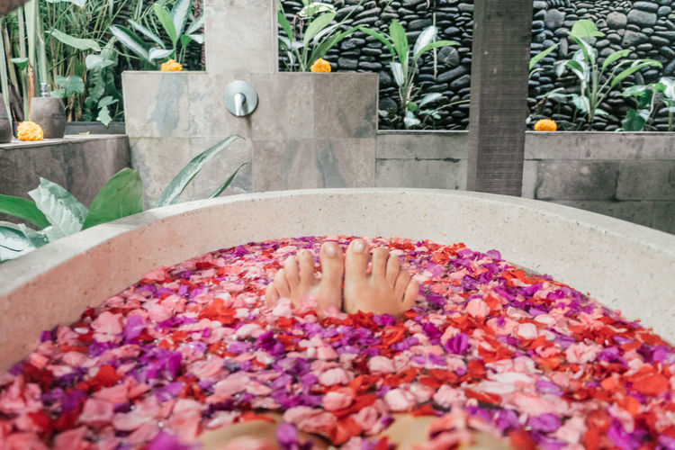 Spa Time Relaxing Relaxing Moments Beauty Care Petal Flower Petals Flower Bath Serenity Hygiene Intimate Feminine  Wellbeing Food And Drink Relaxation Beauty Spa Indulgence Flowering Plant Health Spa Healthy Lifestyle Bathtub Spa Luxury Floating On Water Aromatherapy Hot Tub