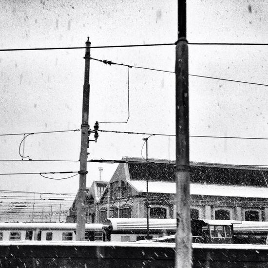 Blackandwhite Power Lines