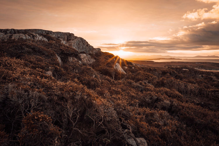 South Stack Holyhead  Anglesey Coastal Path Sunrise North Wales North Wales Coast Nature Sunset Beauty In Nature Dramatic Sky Landscape Gold Colored Scenics Autumn Tranquility Anglesey