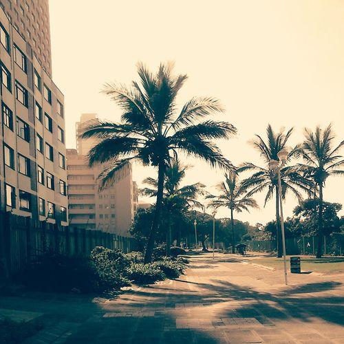 Life Is A Beach Sunshine