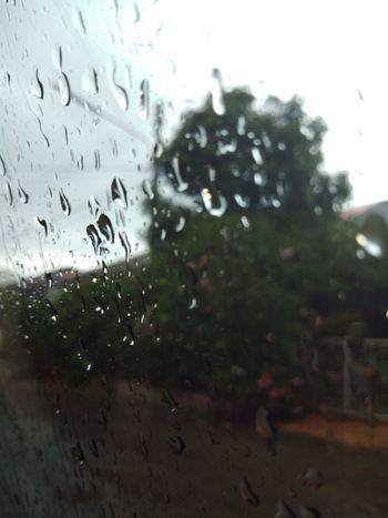 Airplane Water City RainDrop Window Wet Drop Looking Through Window Weather Rain Torrential Rain Car Point Of View Car Interior