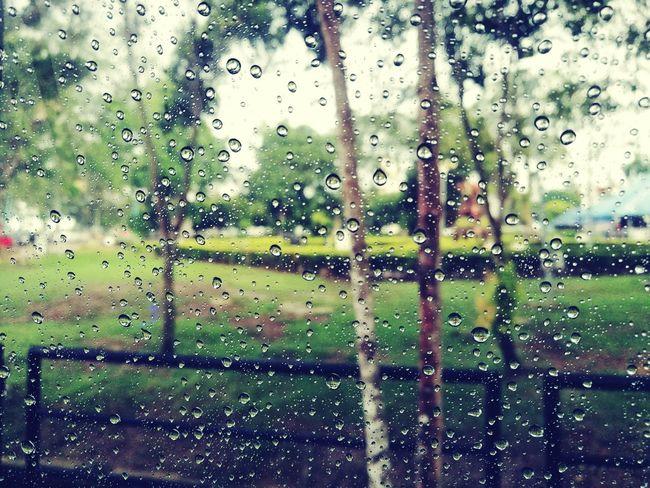 Window Glass - Material Transparent Drop Rain Weather Focus On Foreground Close-up Rainy Season RainDrop Nature Malaysia Muar Tanjung Mas