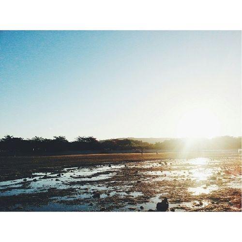 Four times around the sun. Nell VSCO Vscocam