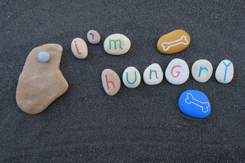 I'm hungry, conceptual stones composition over black volcanic sand Art Work Artistic Creativity Hungry I'm Hungry  Logo Art Bonding Carved Communication Concept Conceptual Design Handmade Idea Restaurant Stones Art