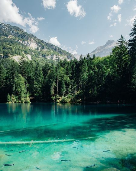 Scenic view of blausee against sky