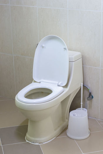 Toilet bowlo Bathroom Toilet Hygiene Tile Toilet Bowl Flooring Home Indoors  Domestic Bathroom Domestic Room White Color Wall - Building Feature Convenience Clean Tiled Floor No People Toilet Paper Public Restroom Flushing Toilet Absence
