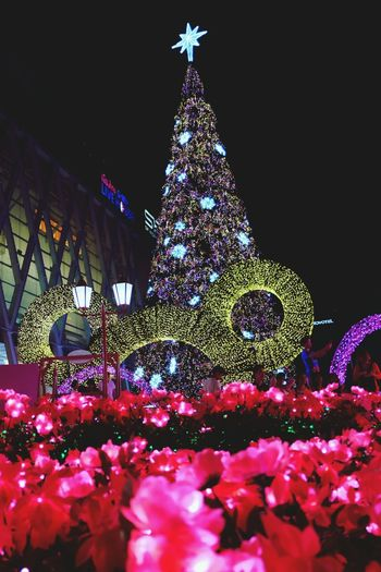 Christmas Around The World It's a tradition that every year people will come here for getting Christmas photos taken with different theme. 😝 Bangkok ลานหน้าเซ็นทรัลเวิลด์ (centralworld Square)