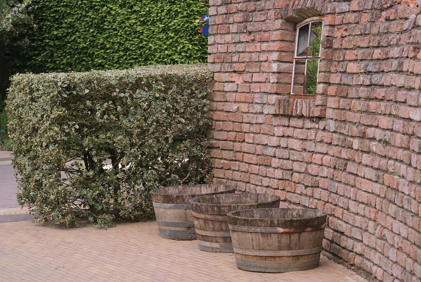 Architecture Brick Wall Building Exterior Built Structure Day Nature No People Outdoors Plant Tree Tuinen Van Appeltern