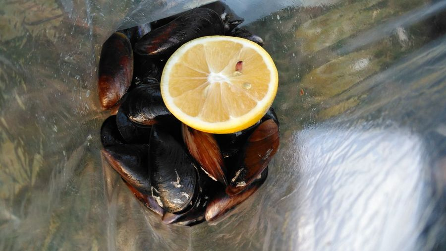 Close-up of clams with lemon slice on plastic
