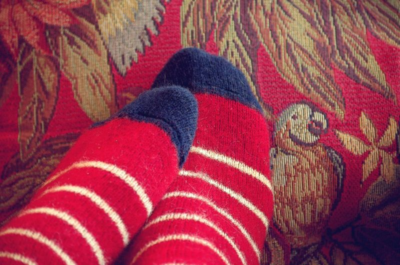 TK Maxx Socksie Festive Spirit Stay Cozy Season  Wild And Wooly Home Body Winter Days Tapestry Virgin Wool Red Relaxation Tapestries Curling Up Getty Images Premium Collection Eyeem Collection Beauty And Elegance