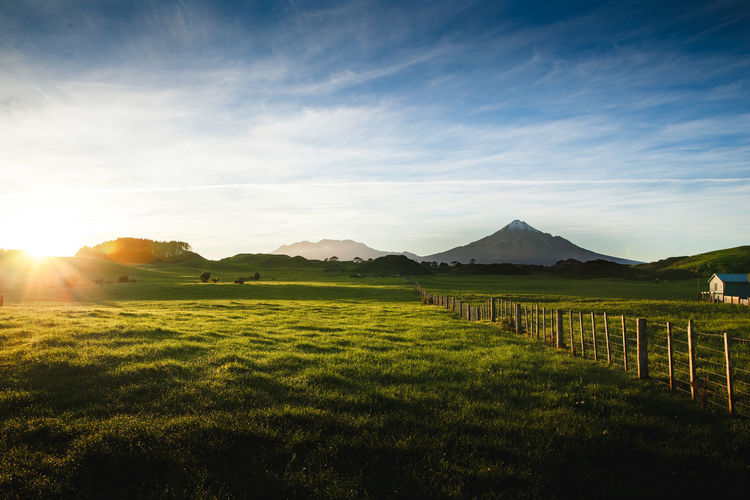 New Zealand Beauty New Zealand Scenery Agriculture Beauty In Nature Day Field Grass Landscape Mountain Nature New Zealand No People Outdoors Rural Scene Scenics Sky Sunlight Tranquil Scene Tranquility