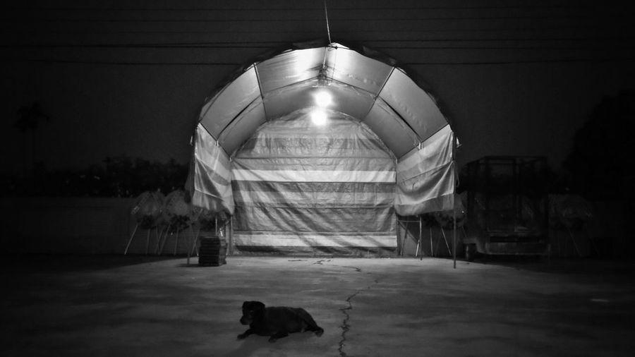 2017/9/22 街拍獵影~~晨夜之間 於社頭 Taiwan Bw Bw_lover BW_photography B&w Photo B&w Bw Photography B&w Photography Bwphotography Streetphotography Street Street Photography Streetphoto_bw Street Scene Streetphotography_bw b&w street photography Nightlife Night Nightphotography Built Structure Space EyeEmNewHere