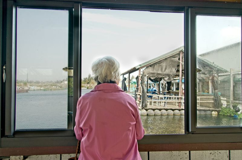 Rear view of woman standing by window