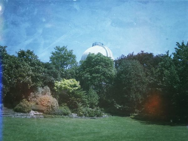 In The Mean Time EyeEm London Meetup Royal Observatory Nature Greenwich