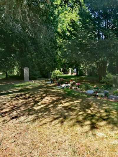 Beauty In Nature Day Grass Gravestone Green Color Growth Landscape Nature No People Non-urban Scene Outdoors Scenics Tranquil Scene Tranquility Tree Tree Trunk