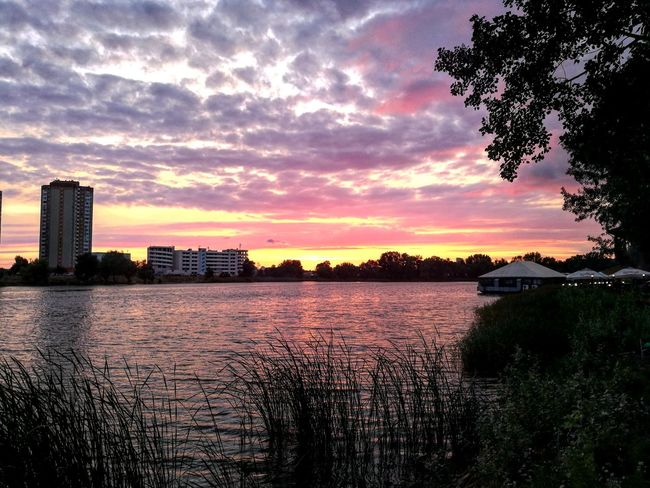 Relaxing Lake Lake View Evening Evening Sky Summer Evening Beauty In Nature