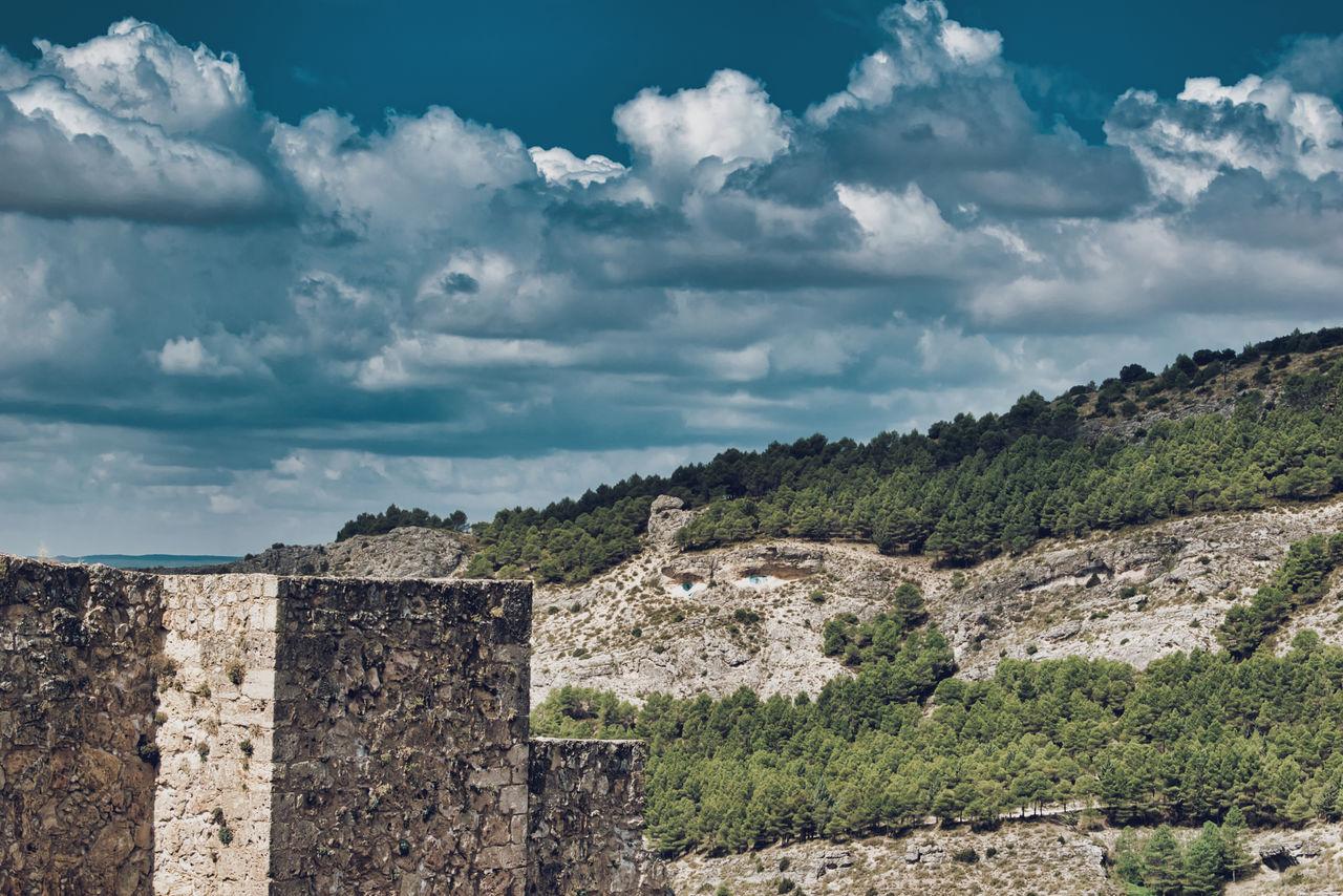 Gallumbo Verde
