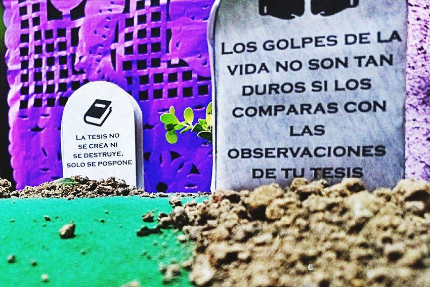 Text Communication No People Close-up Focus Fragility Diademuertos2017 México Traditional Festival Tesis Humornegro