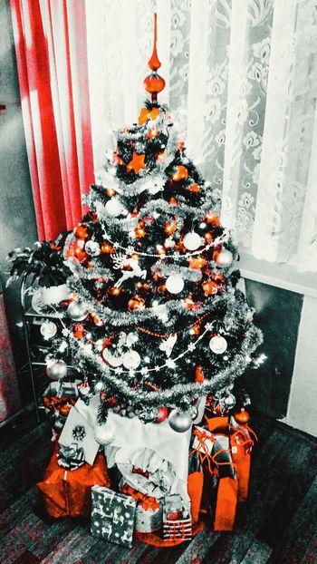 Christmas Tree Christmas Lights Merry Christmas!