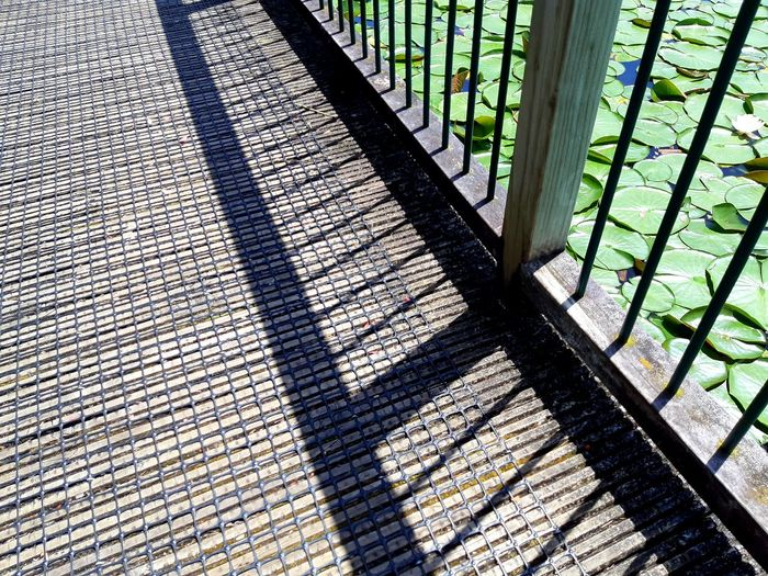 ..........its offside!!!!!! https://youtu.be/RZHc256tf2w Selected For Partner Accidental Photo Bridge Over Water Happy Weekend !!! My Spring In New Zealand Sorry Not Sorry Fence Lakeside Lilypads Shadow Sunlight Pattern Close-up Full Frame Focus On Shadow Detail Long Shadow - Shadow