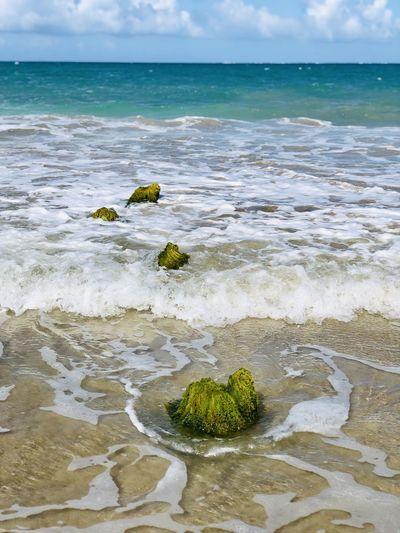 Unexpected finds in ocean