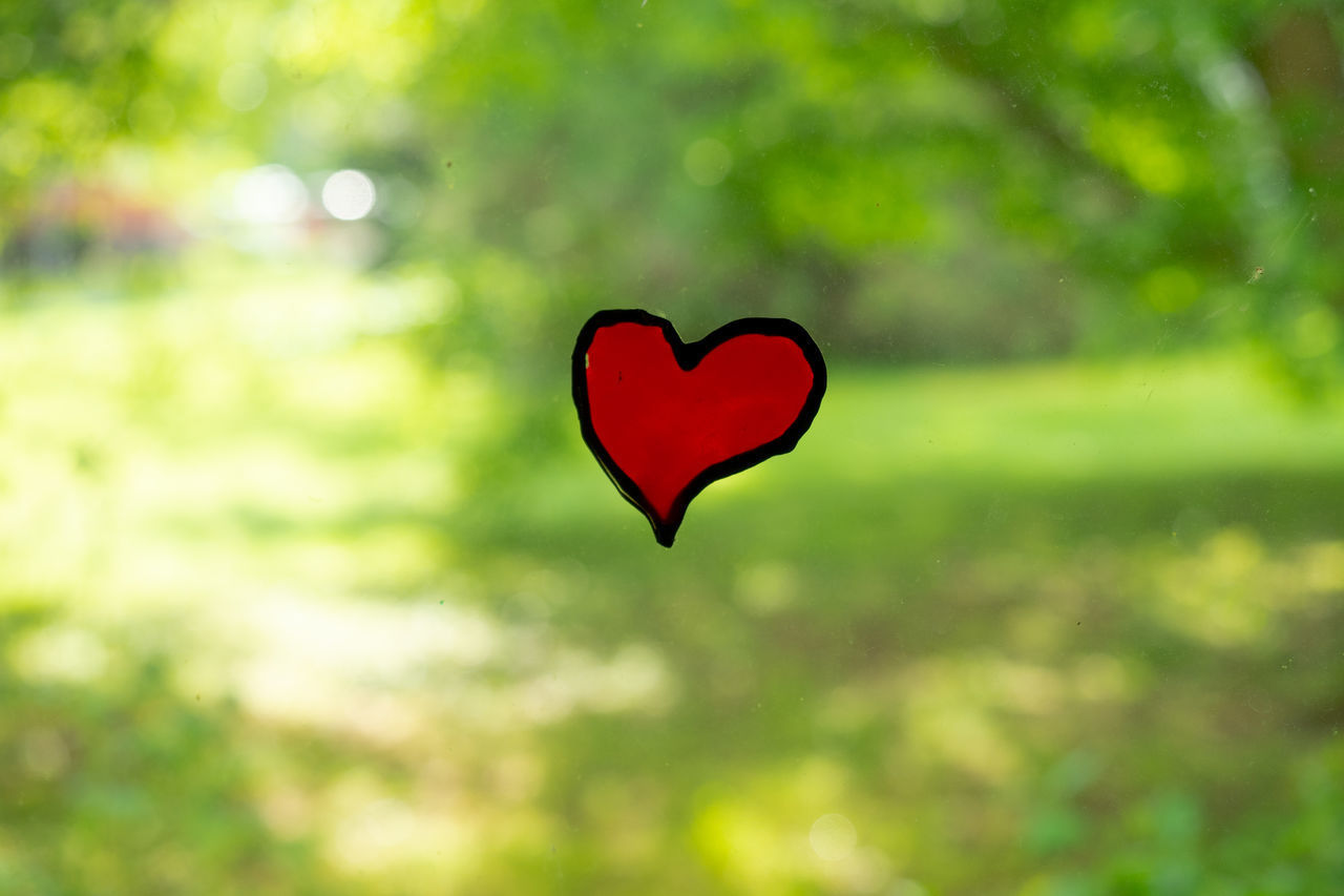 heart shape, love, positive emotion, emotion, focus on foreground, close-up, no people, green color, day, creativity, nature, plant, shape, design, art and craft, red, outdoors, selective focus, valentine's day - holiday